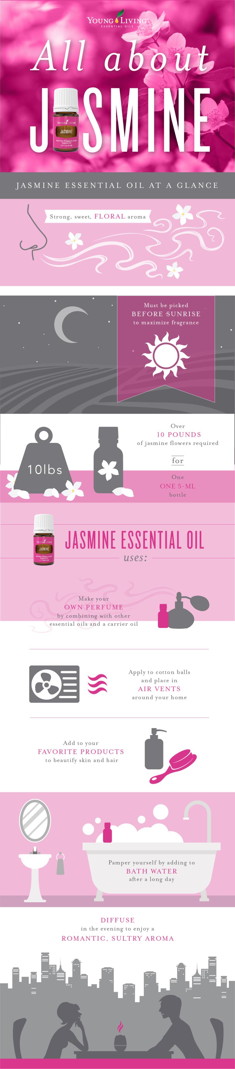 Blog_AllAboutJasmine_infographic_US-01-1
